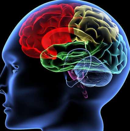 癫痫大发作的预防有哪些呢