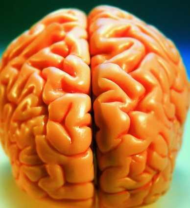 锌摄入过量对癫痫病的发作有关系吗